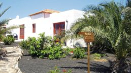Cheap Holidays to Castillo Apartments
